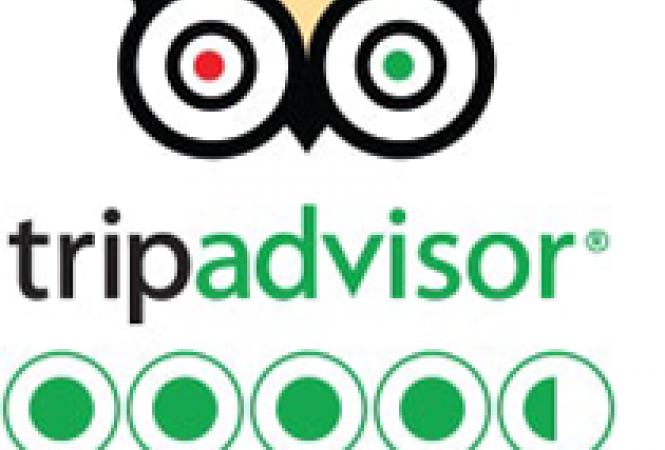 tripadvisor 4.5 bubbles.png